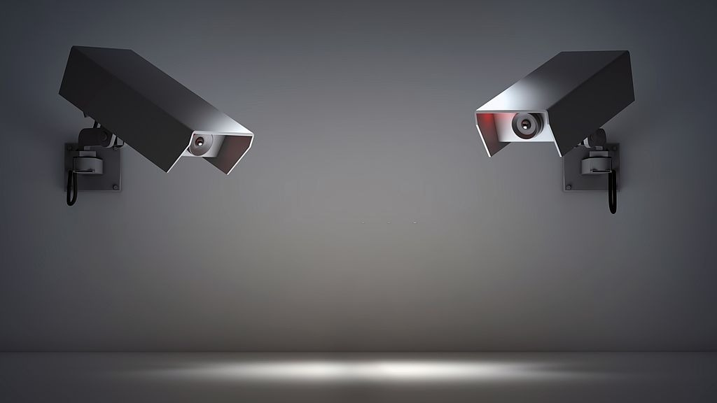 Two security cameras.